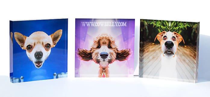 Acrylic Photo Blocks | Custom & Large Sizes | Bumblejax |